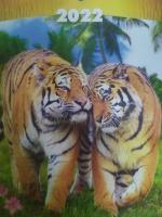 Перекидной календарь А3, Тигр1