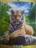 Перекидной календарь А3, Тигр2