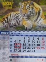 Квартальный календарь на 1 пружину, Тигр7