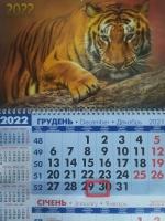 Квартальный календарь на 1 пружину, Тигр3