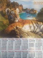 Листовой календарь А2 на 2022 год, Тигр6