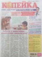 Копейка. ТВ Программа и советы №41/21