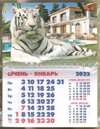 Календарь-магнит, 10х15, Тигр 5, 2022 год