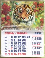 Календарь-магнит, 10х15, Тигр 11, 2022 год