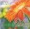 Перекидной календарь 20х20, Квіти