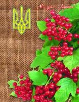 """Тетрадь А4/192, тверд. переплет серия """"Мой дом"""""""