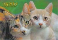 Карманный календарь на 2022 год, Два кота
