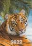 Перекидной календарь А4, скоба, Тигра