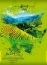Книга учета, А4, 192 л, офс, кл, тв.пер. Зеленая